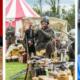 Loughrea Medieval Festival 2016